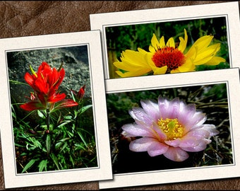 3 Wildflower Photo Note Cards - Flower Note Cards - 5x7 Flower Cards - Blank Wildflower Note Cards - Flower Greeting Cards (FL2)
