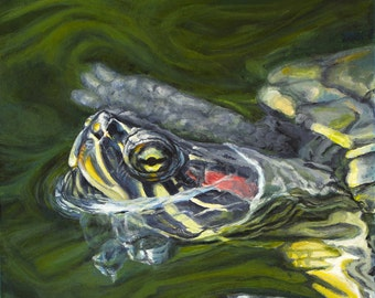 Turtle  giclée print from original acrylic painting