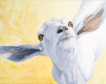 Goat, Nubian Saanen mix with airplane ears giclée print from original painting