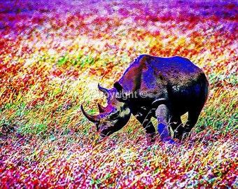Rhino - Print Run of 100