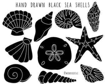 Sea Shells clipart -Hand Drawn Clip Art - Beach Clipart Shells illustration - Black and White