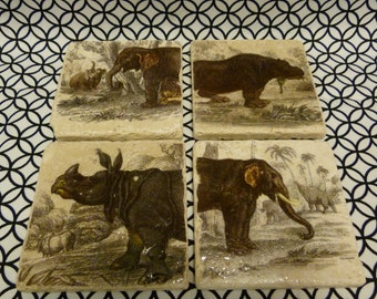 Pachyderms Marble Tile Coasters - Set of 4