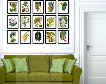 Fall Sale Tropical Wall Decor Set Of 15 Botanical Illustrations Wall Art  Prints, Tropical Fruits