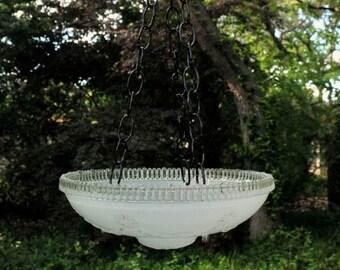 White glass bird feeder - hanging succulent planter