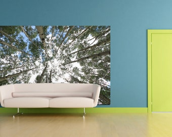 Large nature home decor fine art photograph fabric wall cling art peel and stick wall decal aspens tree blue and green wall art home decor