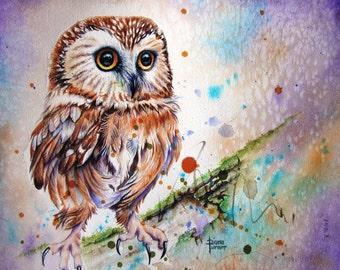 OWL Watercolor Print by Diana Turner, Wall Art, 8 x 10