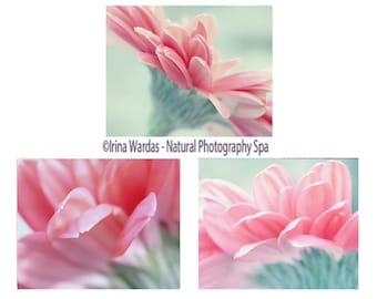 Pink & mint flower photography set, gerbera daisies 8x10 11x14 floral art prints, 3 piece wall art nature botanical photo set, coral teal