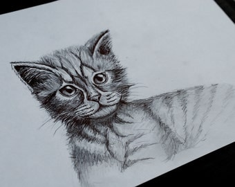 Cat drawing (handmade)
