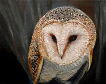 Barn Owl Original Oil Painting (300mm x 230mm)