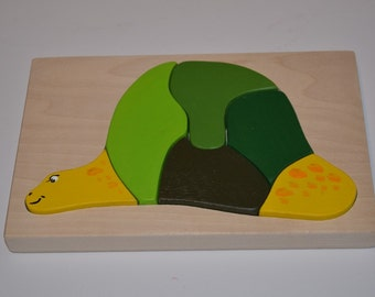 Green turtle, Puzzle turtle