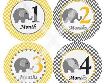 Printed Elephant Baby Monthly Milestone Stickers, Elephant Baby Monthly Stickers, Elephant Baby Shower Gifts, Elephant Baby Shower
