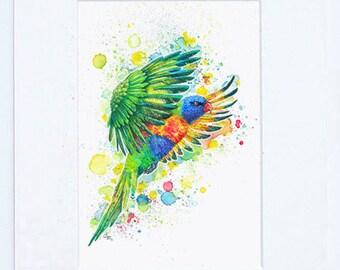Rainbow Lorikeet Parrot Fine Art Bird Print