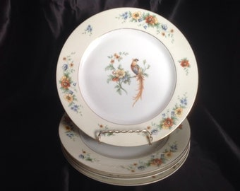 Vintage dinner plates, Bird of Paradise plates, 4 bird of paradise dishes, H & C Heinrich, Lorraine, exotic dishes, replacement china