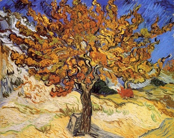 The Mulberry Tree by Van Gogh, Giclee Canvas Print