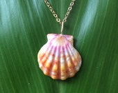 Rainbow sunrise shell necklace
