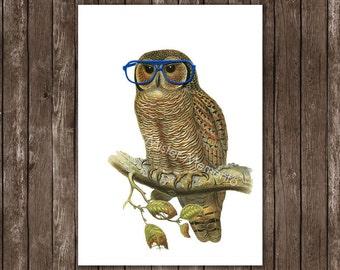 owl decor - nerdy, geekery housewares home decor - owl with blue glasses, owl art print