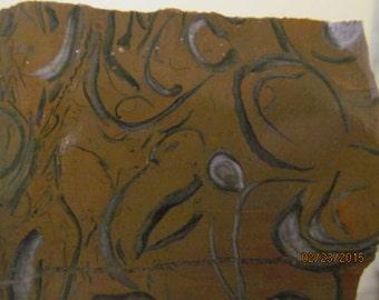 Sea Shell Sedimentary Jasper.