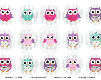 Owls Bottle Cap Images ~ Instant Download 4x6 inch ~ Chevron ~ 1 Inch Circles ~ Hairbow Centers ~ DIY ~ Printable Image Sheet OW-132