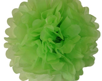 Key Lime Tissue Paper Pom Pom 12inch TPP120089 Just Artifacts Brand