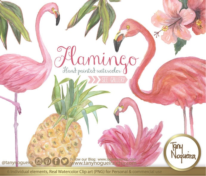 pineapple and flamingo background. 🔎zoom pineapple and flamingo background