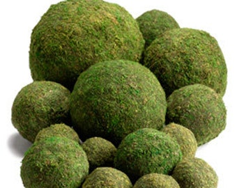"All Natural Moss Balls  (4"",6"" & 8"") - Perfect For Rustic Country Weddings"