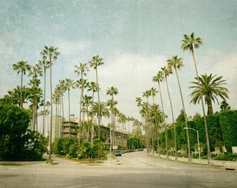 California Photography, Beverly Hills Hotel, Los Angeles, Palm Trees, Summer, Fine Art Print, mint green, teal blue, cream, Wall Art