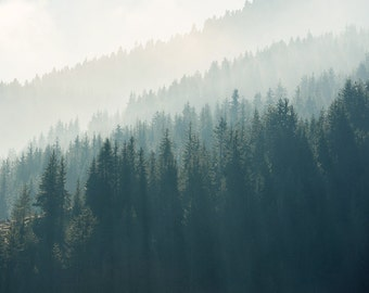 Digital download. Morning sunlight over the trees in Rhodope mountains. Square format. Image size 4016 x 4016