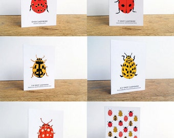 Ladybird card set