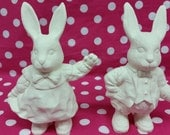 DIY, Ready to Paint or Finished Ceramic, (see Finish and Description) Choose either Mr or Mrs Bunny, Hare, Easter, Ceramic Figurines, Bisque