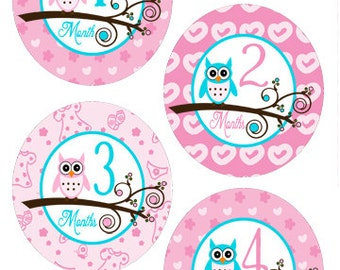 Baby Month Stickers Owl Baby Onesie Monthly Stickers Baby Milestone Stickers Baby Shower Gift Bodysuit Stickers Owl Stickers