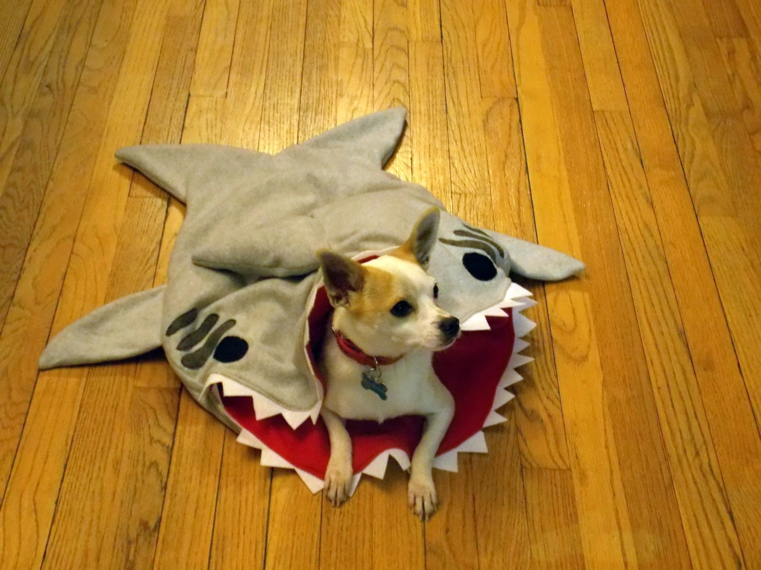 Shark Burrowing Bed for Dogs or Cats Pet Sleeping by NewAndKnown