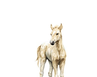Horse Watercolor Print- Baby Animal Painting - Colt Painting - Farm Animal Painting - Baby horse Painting - Colt- Horse - Baby Room - Baby