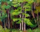 Poplar Portrait, landscape, trees, 9 x 12, original art, oil painting, North Carolina