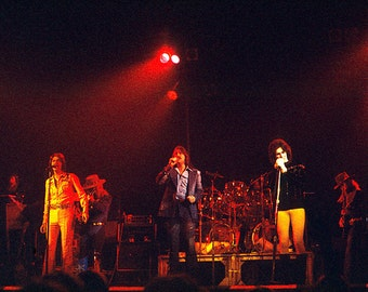Three Dog Night Vintage Original Concert Photo