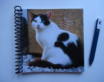 Odd-Eyed Cat Notebook