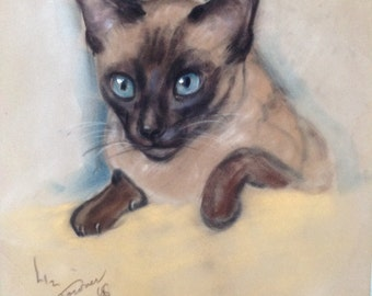 Vintage Cat Original Art Siamese 1960s Chalk