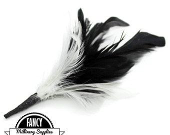 SALE -  Black / White - Feather Pick -  Coque Feathers - Hat Decor