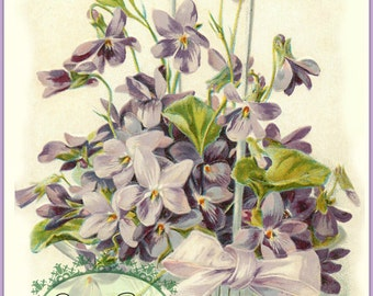 Basket of Violets LARGE format digital download Victorian shabby cottage chic Buy 3 get one FREE