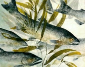 Homeward Bound- Gyotaku Reproduction of Chinook Salmon in Giant Kelp
