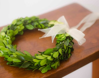 Preserved Mini Boxwood Wreath, Simple Spring Wreath, Spring wreath, boxwood wreath, small boxwood wreath
