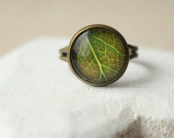 Leaf Ring Adjustable ring Small Round Green ring Simple green ring Leaf jewelry woodland jewelry green leaf ring glass domed ring R31
