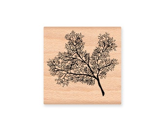 SEA FAN CORAL-Ocean coral-fan coral- wood mounted rubber stamp- (32-20)