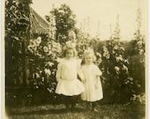 1900s Sweet Little GIRLS Holding Hands in FLOWER Garden - snapshot 606-A