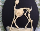 Skeleton Stag Cameos 40x30mm set of 3, Bone on Black