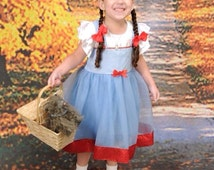 Dorothy Costume Tutu Dress: Blue and White gingham with red sparkle, wonderful wizard of oz, birthday party, halloween, dress-up, adjustable