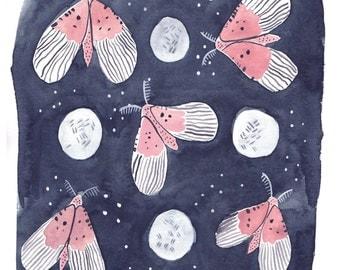 Night Garden Moth Giclee Art Print  8 x 10