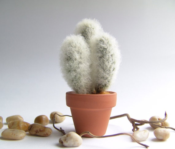 Hairy Cactus Funny Small Gift Home Decor by felttess on Etsy