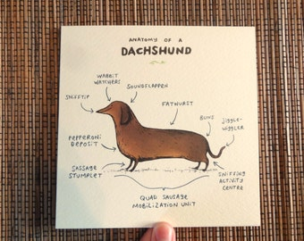 Anatomy Of A Dachshund Card