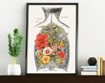 Nature inside an Open Human Back -Anatomy Science prints A4 wall art- Anatomy art Open back study Human anatomy SKA098WA4