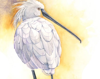 Spoonbill print of watercolor painting S2015 - A4 size print, bird art, wall art, home decor